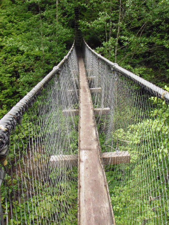 Suspension Bridge on WCT