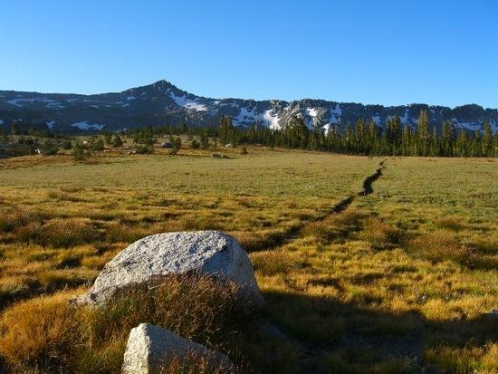 Magnificent meadow going toward Post Peak Pass