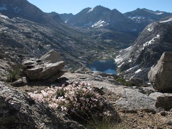 Looking back onto Palisade Lakes, halfway up Cirque Pass