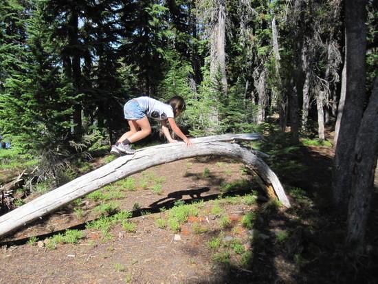 Wilderness Gymnastics - 4