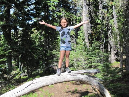 Wilderness Gymnastics - 5