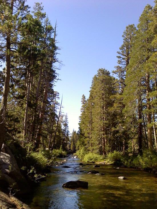 W Walker River