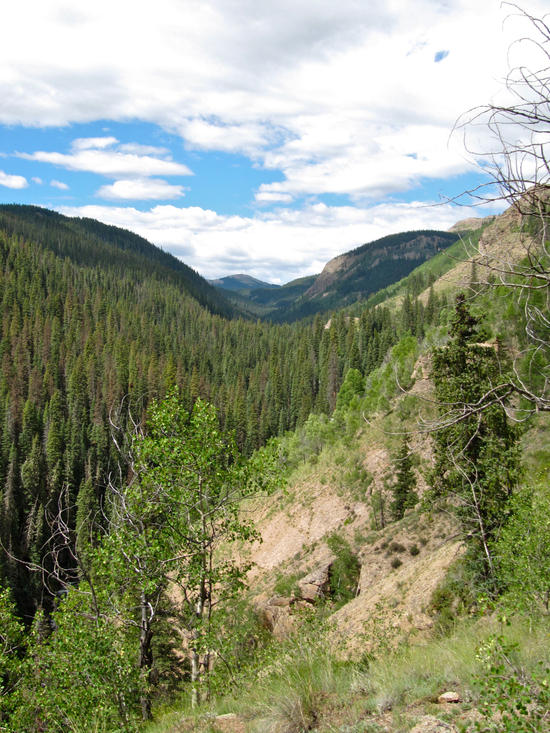 Looking up the Ute Creek canyon into the Weminuche
