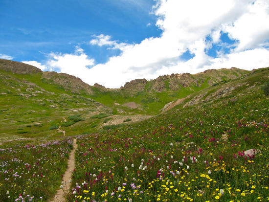 Trail up to Columbine Pass - every bit as steep as it looks