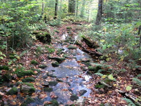 stream path