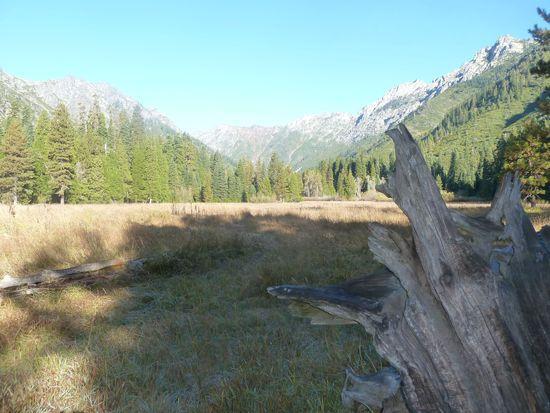 morris meadow