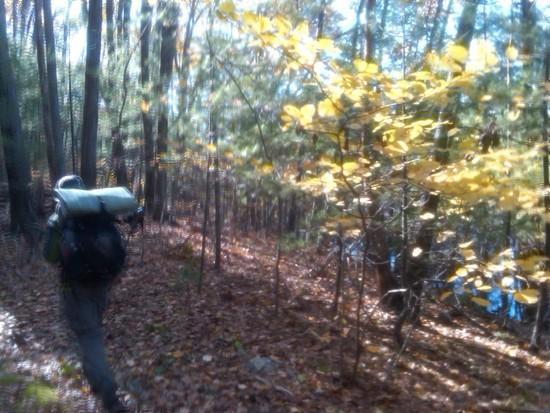 Warner Trail 3