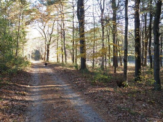 Warner Trail 7