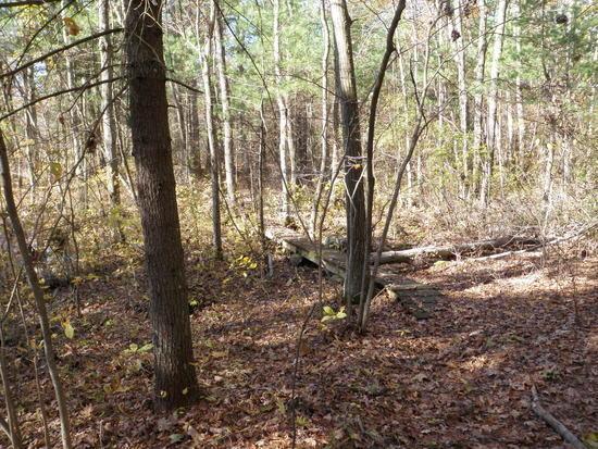 Warner Trail 18