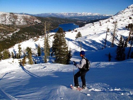 Donner Pass Snowshoe