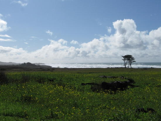 San Mateo coastline HWY 1 May