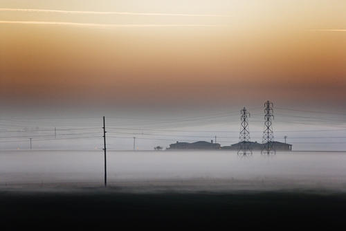 Fog - Central Valley