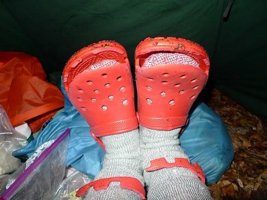 Cut Crocs