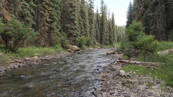 perfect stream