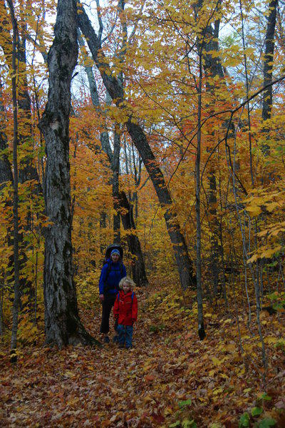 fall hikers