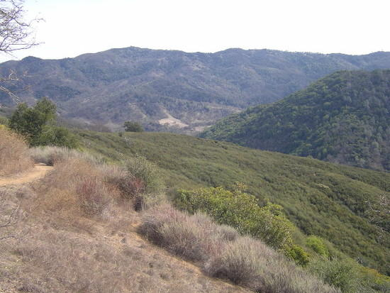 The terrain near Manzanita point in Henry Coe state park