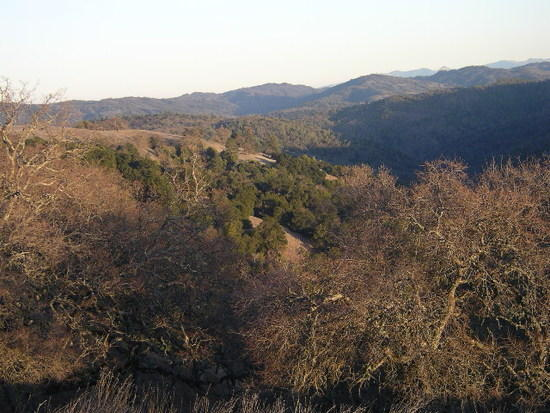 Henry Coe State Park; the largest state park in California