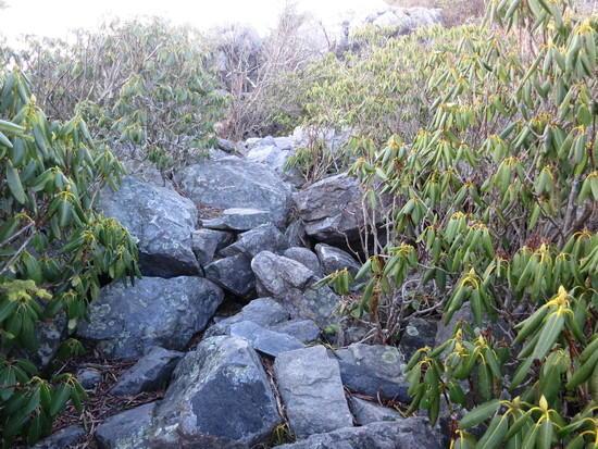 wr trail
