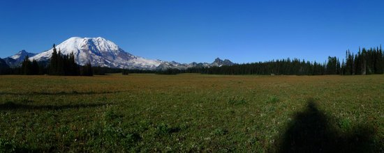 Grand Park on Rainier - Dual Monitor View
