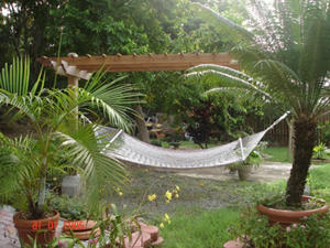 hammock from my friend's home