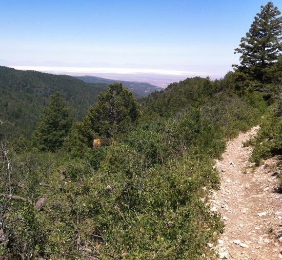 Rim trail view
