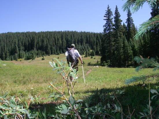trail 711