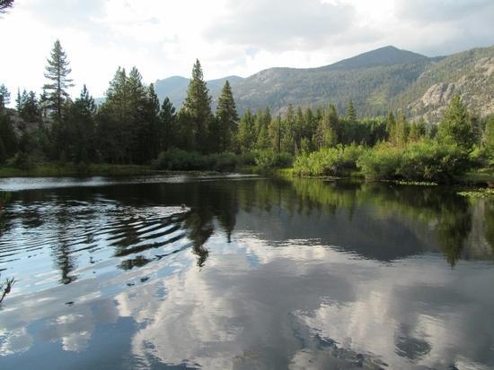 Swimming in Warm Lake