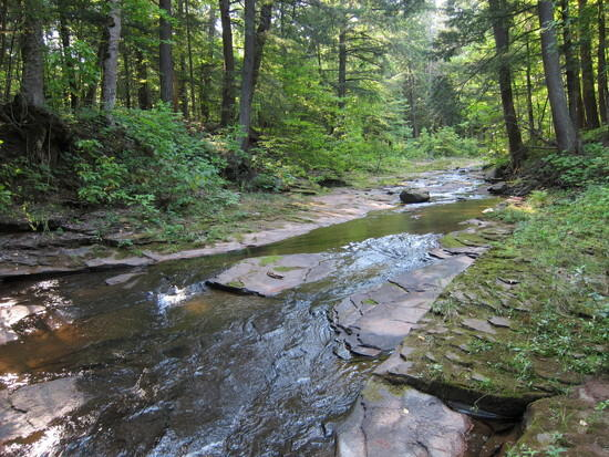Little Carp River