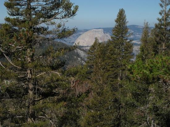 Half Dome from Iceberg Pass Trail