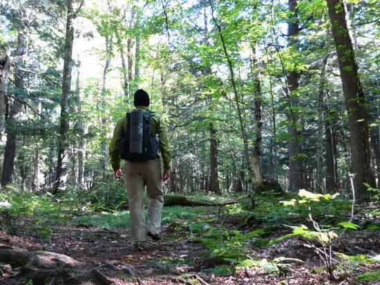 superior trail