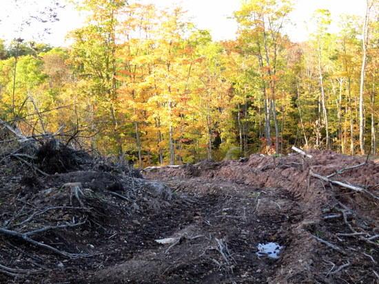 bulldozed