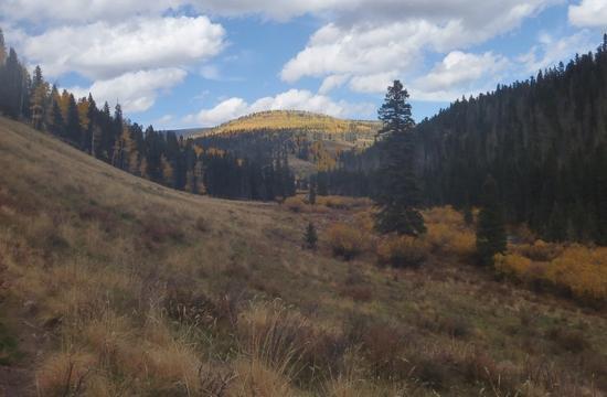 Pecos valley