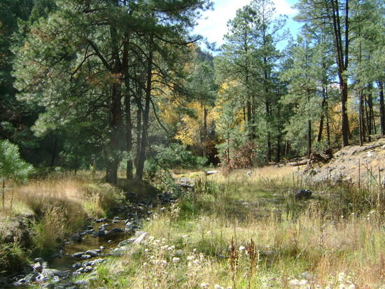 stream at black canyon trail