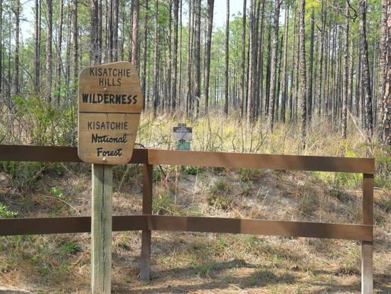 Kisatchie Wilderness Sign