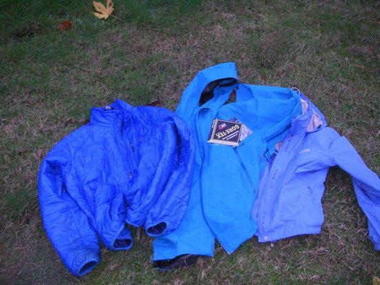 blue coat2