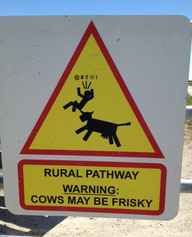 frisky cow sign