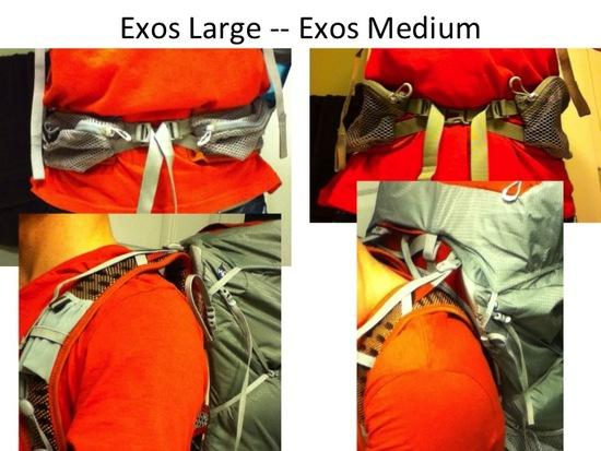 Exos Medium and Large comparison