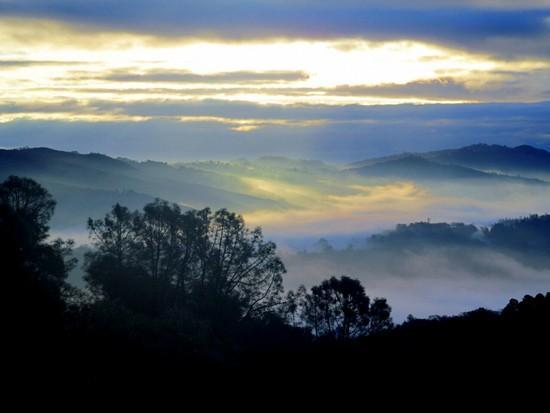 dawn sat