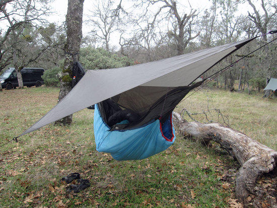 Another Trap and Hammock