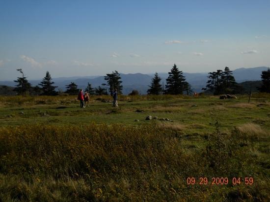Near Crest Trail