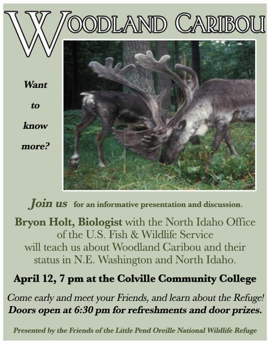 Woodland Caribou presentation