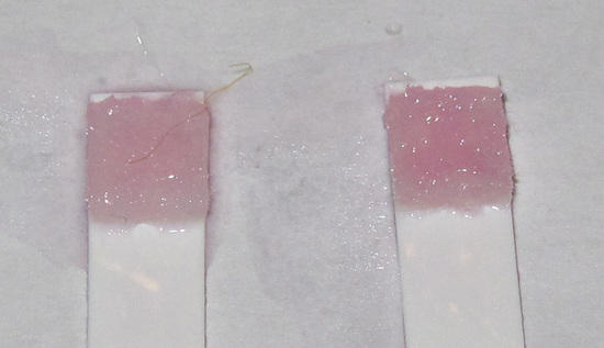 CLO2 test strips (08)