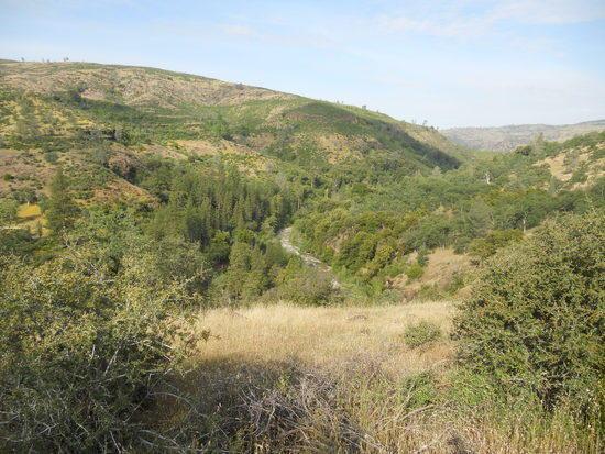 Ishi Wilderness Mill Creek