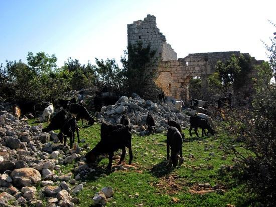 Hidirli church