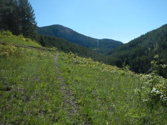 Upper Twin Creek