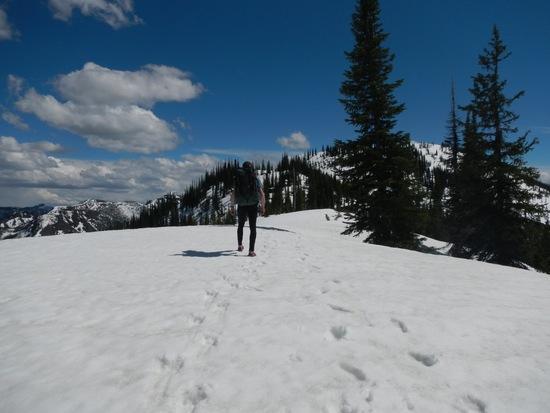 Snow walking