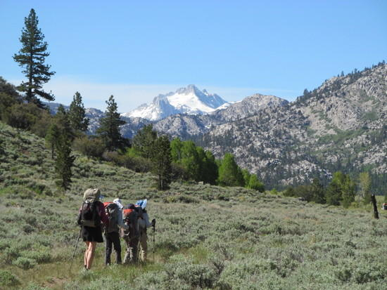 Wife and three daughters at Leavitt Meadows with Tower Peak in back