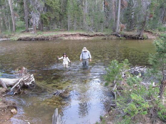 Our daughter Elisabeth wading through West Walker River