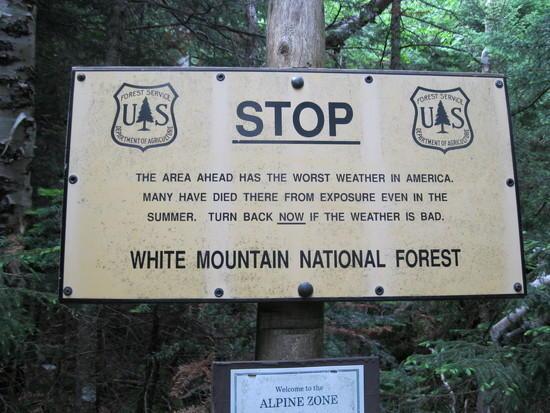 whites sign