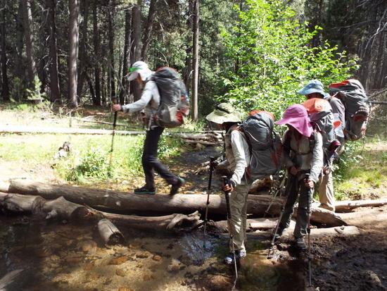 Our girls cross a log bridge